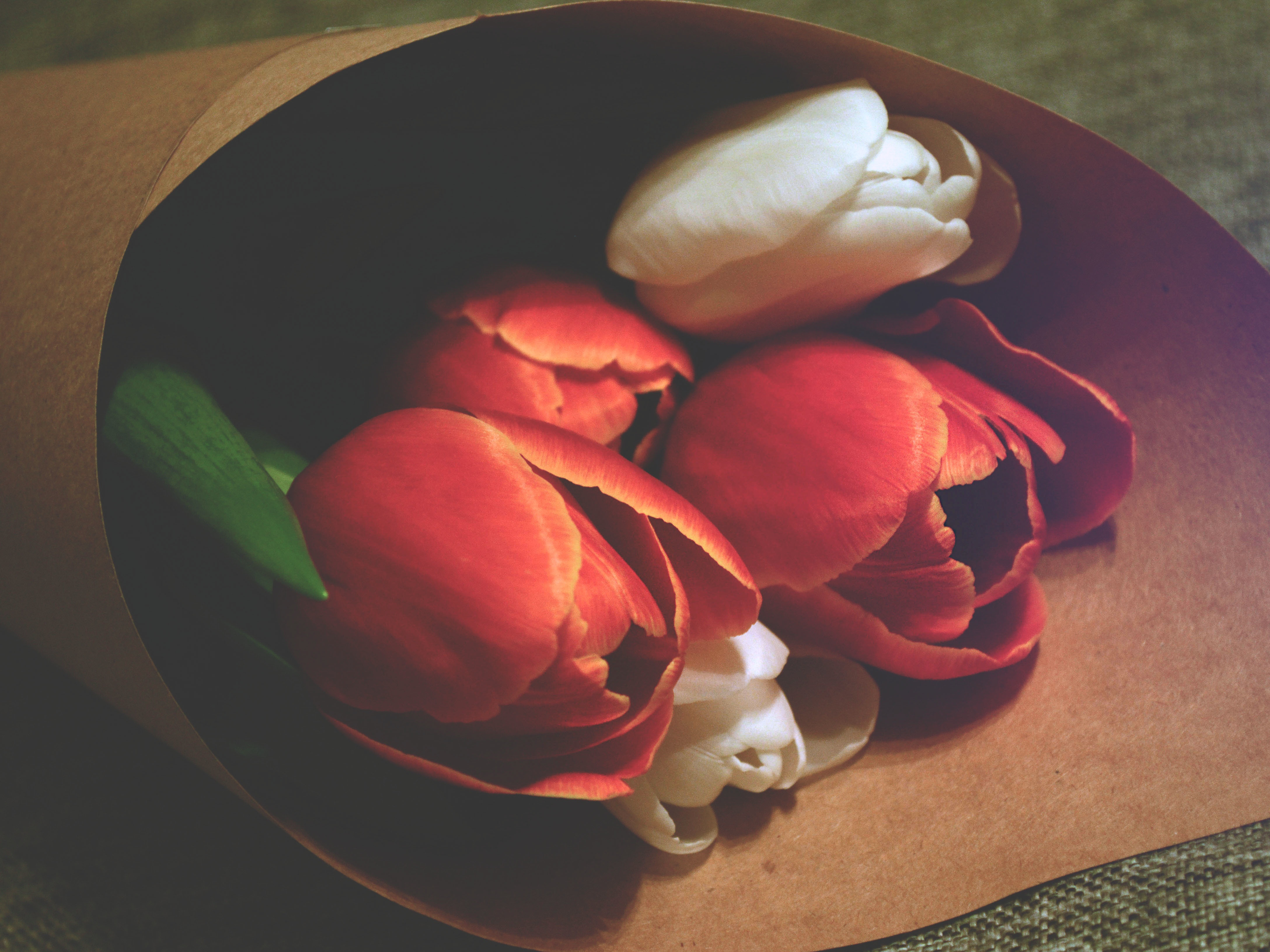 Exploring Brand Archetypes: The Caregiver